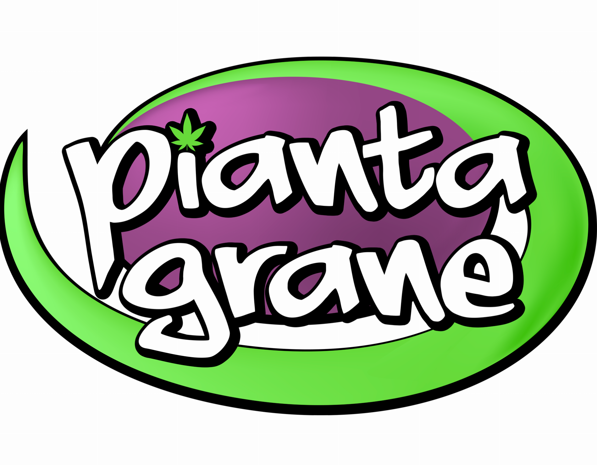 Seed Grow Hemp CBD Shop - Piantagrane Frascati