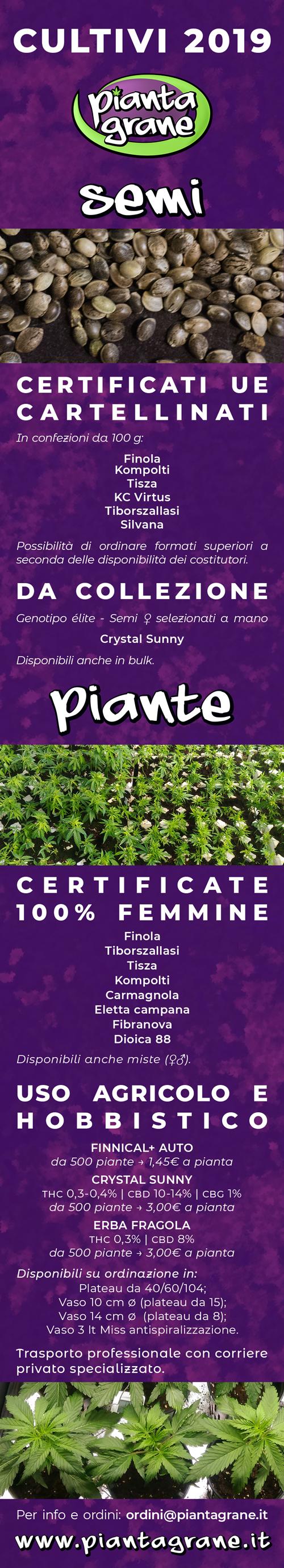 seed & plants | Piantagrane | Seed Grow Hemp CBD Shop