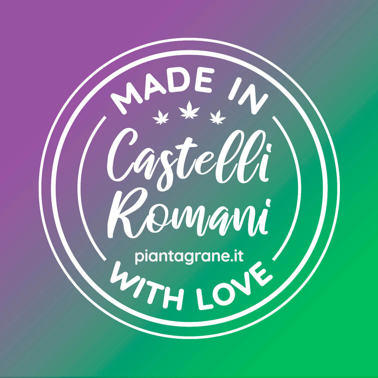 Made-In-Castelli-Romani-Piantagrane