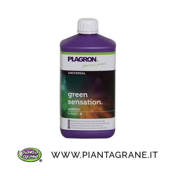 Plagron-Green-Sensation