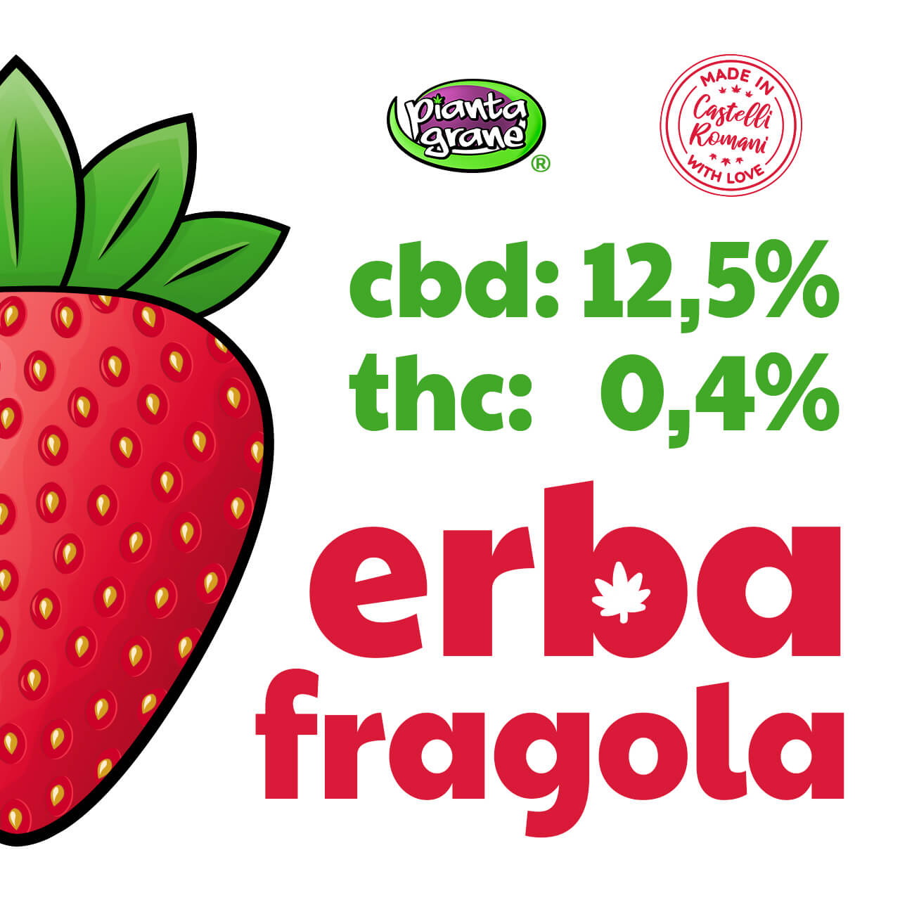 Erba-Fragola-Infiorescenze-CBD