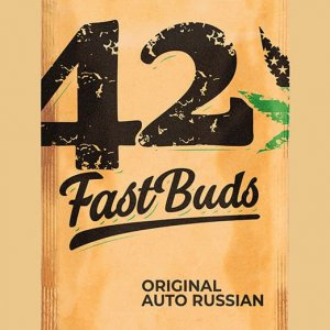 Original-Auto-Russian-Fast-Buds